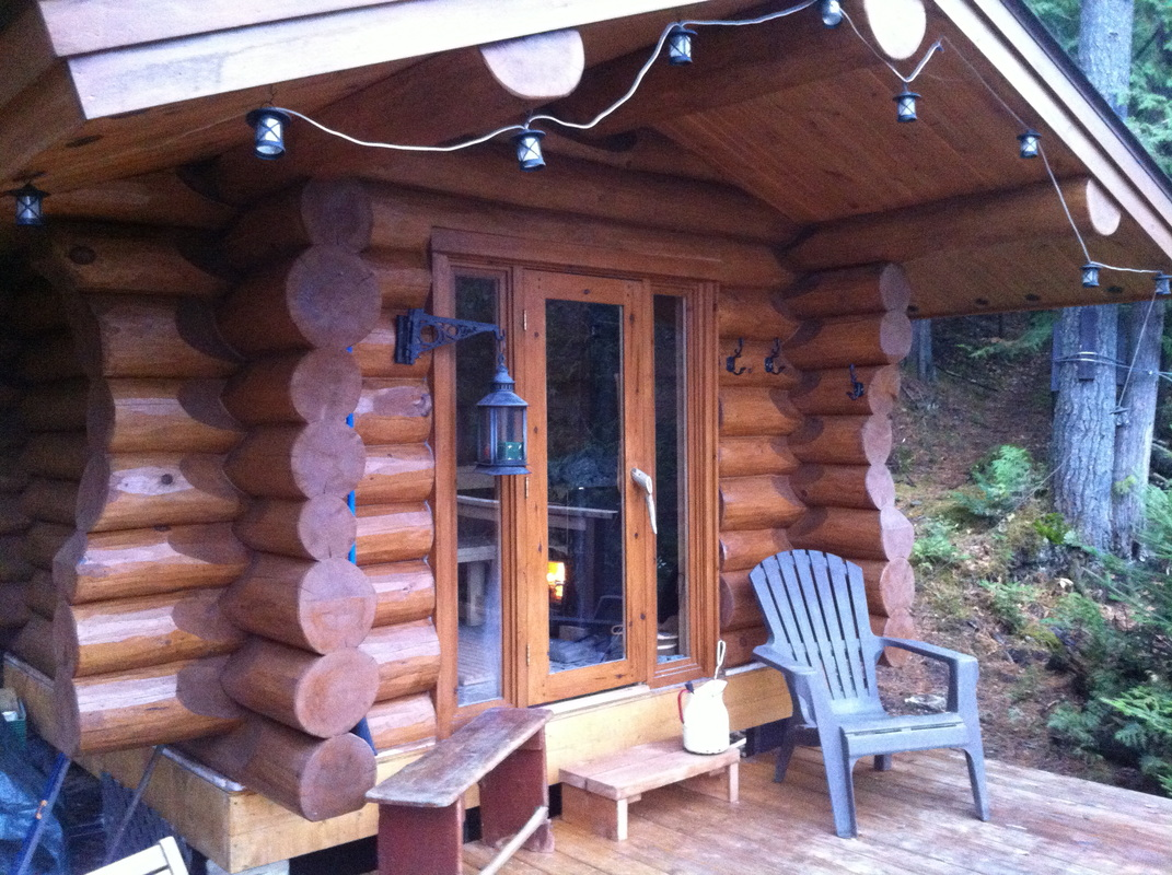 Log cabin in the woods winter - We